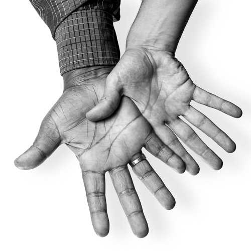 The HANDS Project Logo